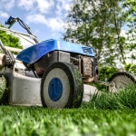 4 August Lawn Care Tips For Central Minnesota