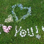 Steps To Love Your Lawn This Valentine's Day & Beyond
